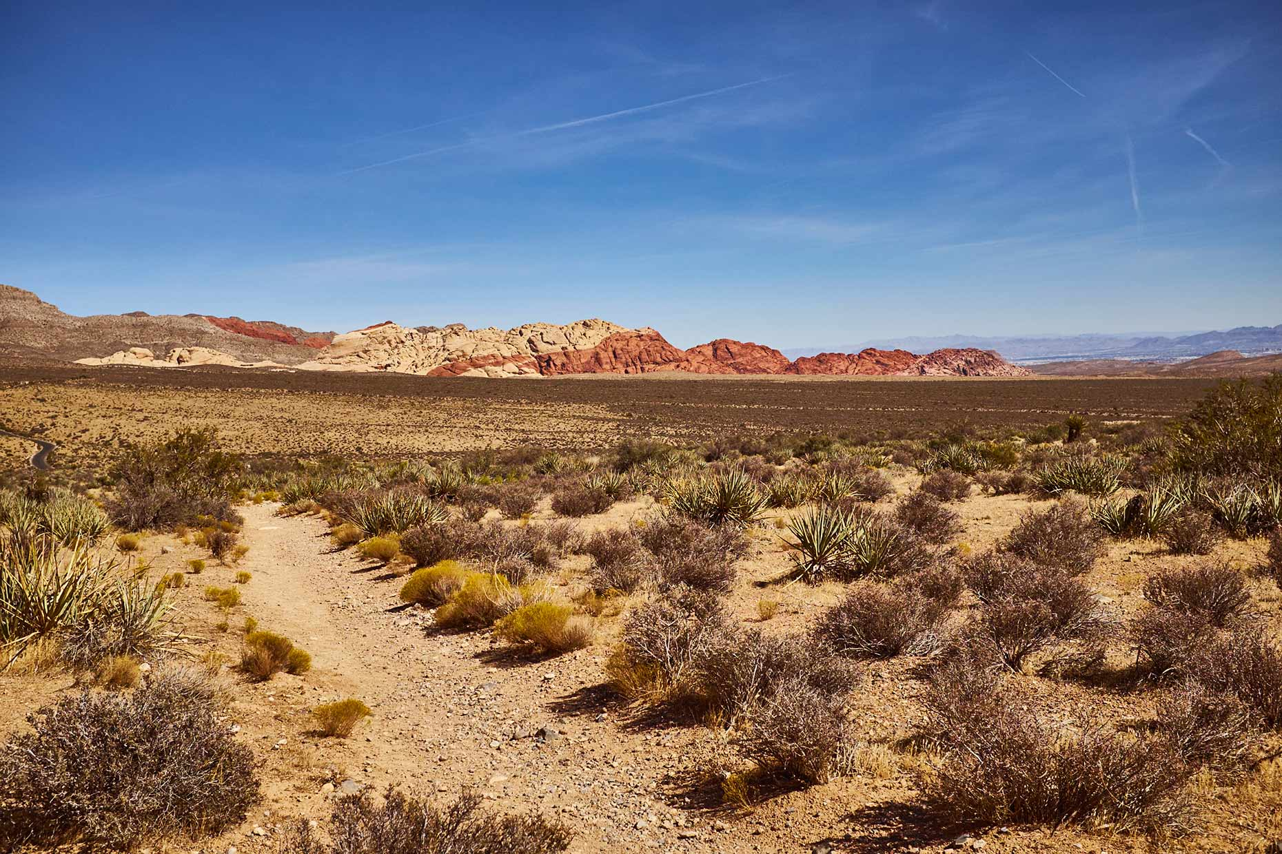 LV_Red-Rock-Canyon-2016_054