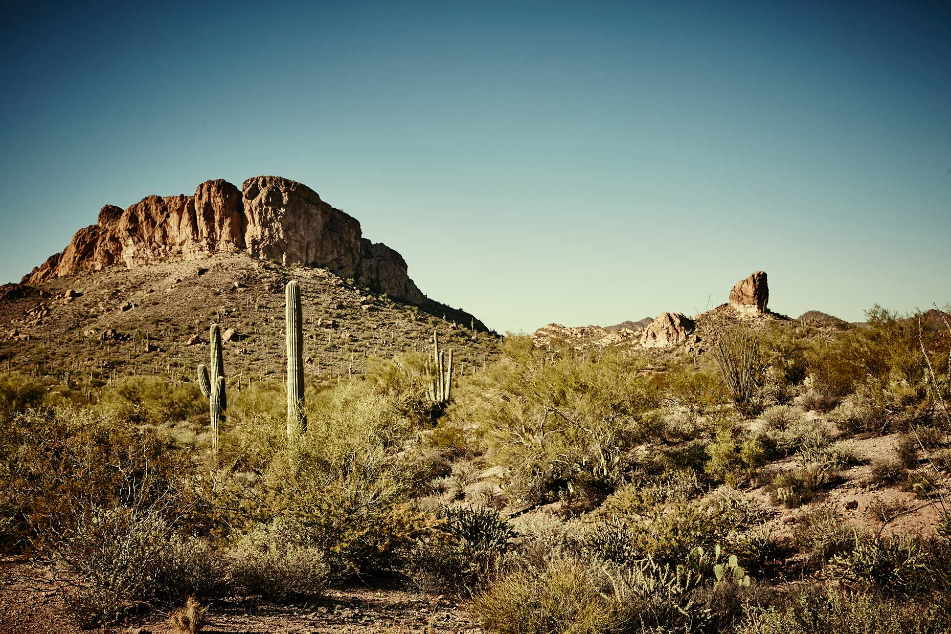 Old-Bull-Lee_Landscape_AZ-1_059
