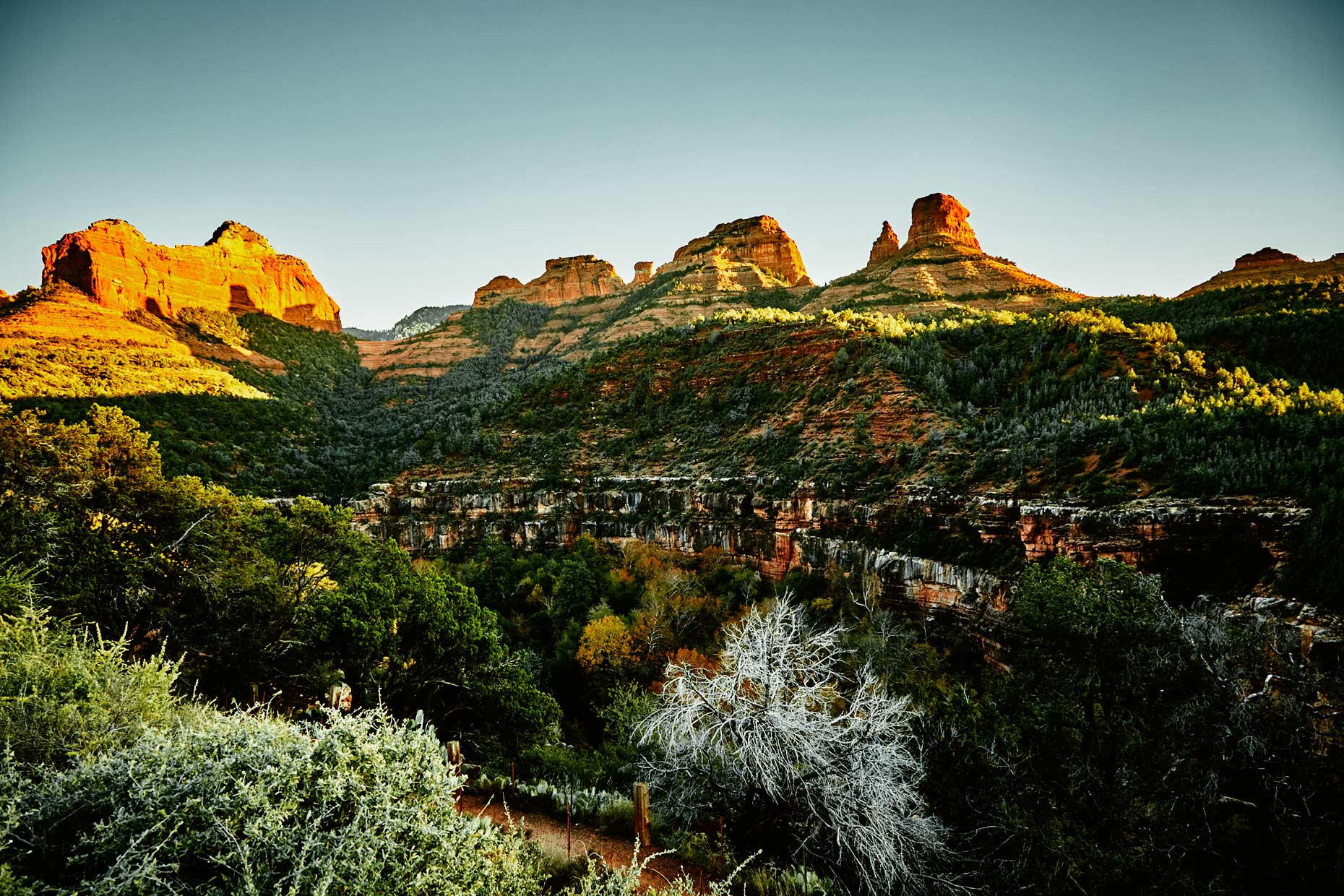 Old-Bull-Lee_Landscape_AZ-2_043