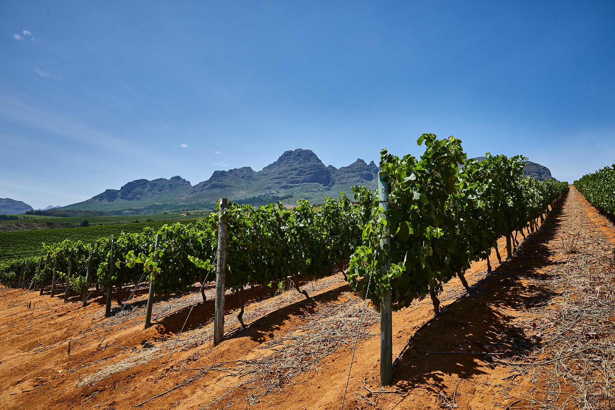 South-Africa_1089