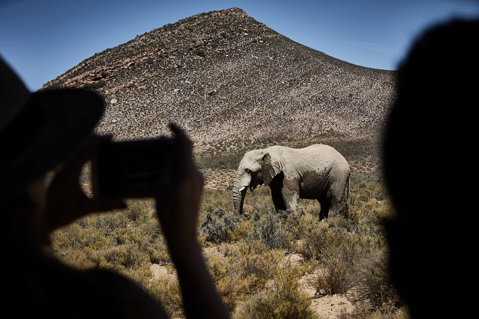South-Africa_647