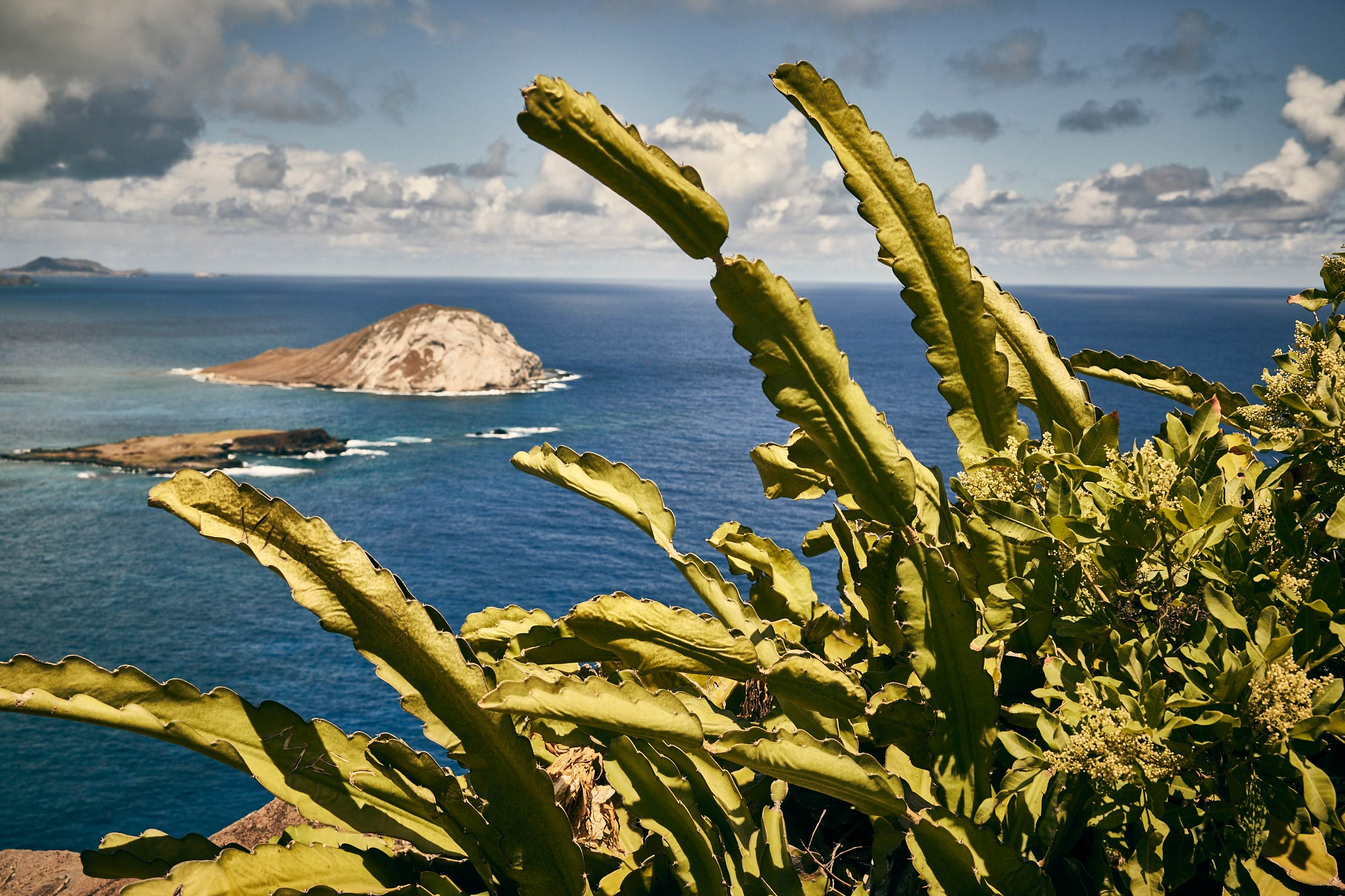 Travel_Hawaii_172